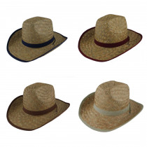 Sombrero de paja WHD-24